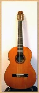 guitars23