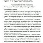GAZZETTA_DI_REGGIO_CULTURA_NAZIONALE__4